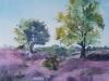 Zomer op de Posbank .  Mixed media:aquarel en pastel  40x50