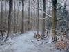 Jan Baggen - Doetinchem Slangenburg bospad in de sneeuw
