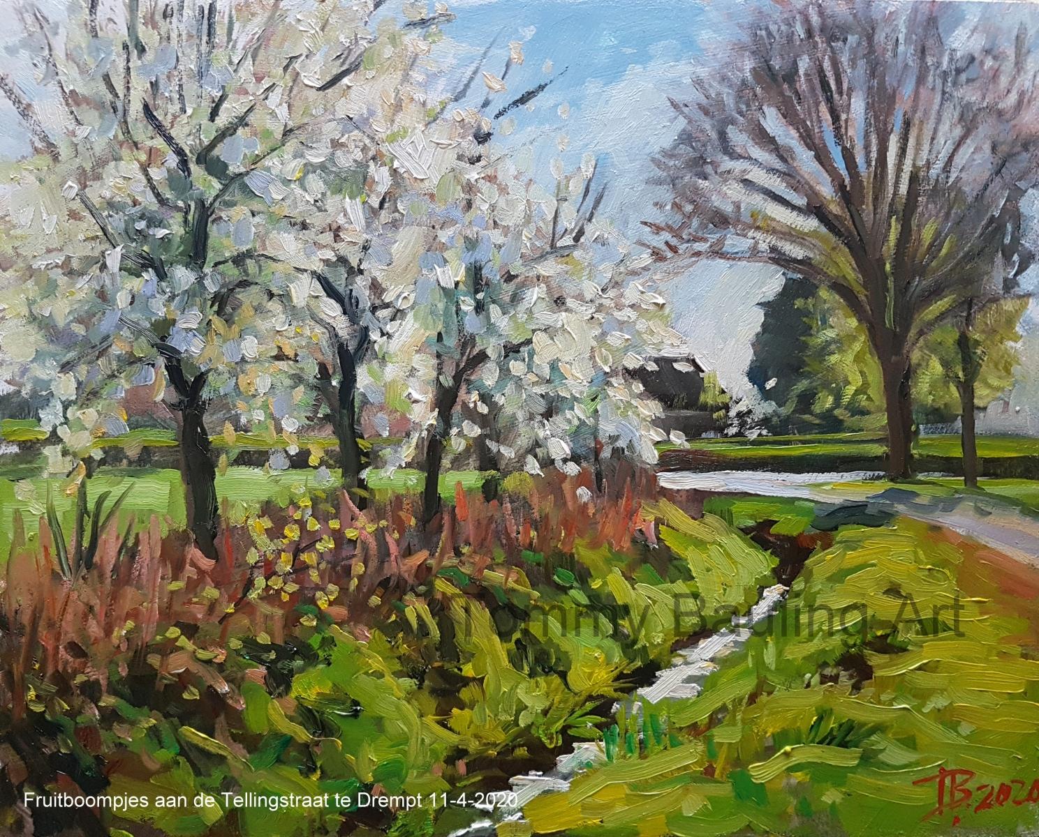 Fruitboompjes-aan-de-Tellingstraat-te-Drempt-11-4-2020