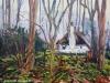 Zoomhuisje-Nunspeet-22-1-2020